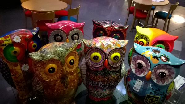 The Little Hoot at BBC Birmingham